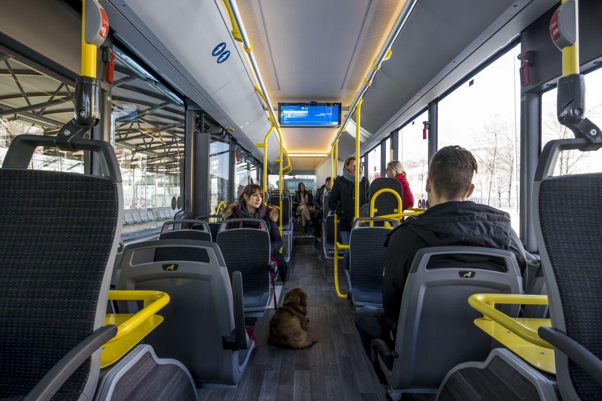Развитие типов оплаты проезда в городах России